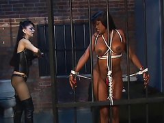Ebony disco chick with huge tits is bound and caged by sexy dominatrix