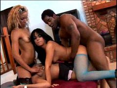 Three babes and one beloved black cock