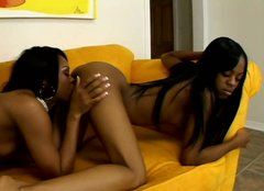 Thirsty ebony girl Vanessa Money eats her horny lover in a hot lesbo fuck video