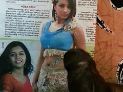 Gooey Cum Tribute to Indian Actress Tamil Actress Trisha