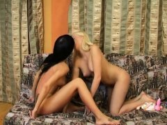 Wicked lesbian girls are pampering each other with vibrators