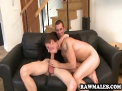 Stud with an enormous cock gets sucked off